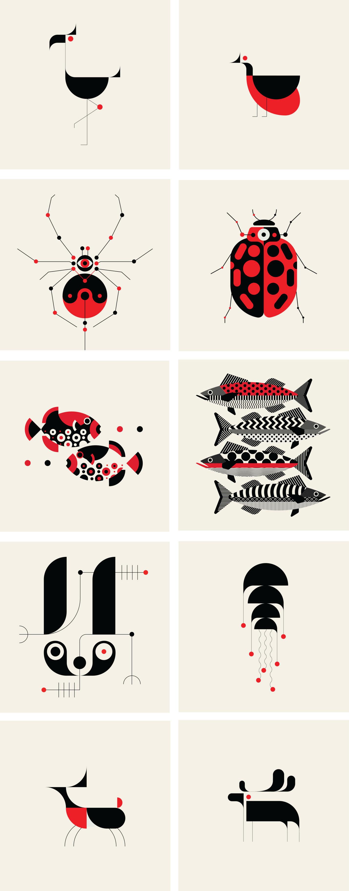 Trüf Creative – Fauna